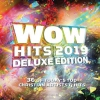 Productafbeelding WOW Hits 2019 -Deluxe (2CD)